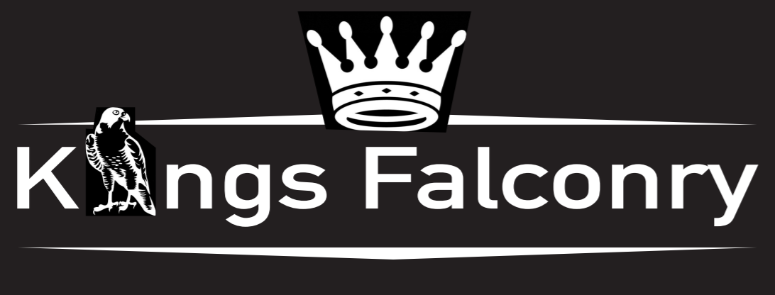Kings Falconry